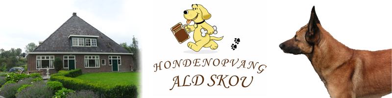 Hondenopvang Ald Skou
